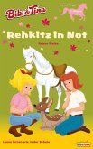 Bibi & Tina - Rehkitz in Not (eBook, ePUB)