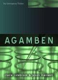 Agamben (eBook, PDF)