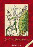 Aus alten Pflanzenbüchern 2017