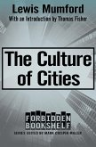 The Culture of Cities (eBook, ePUB)