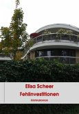 Fehlinvestitionen (eBook, ePUB)