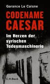 Codename Caesar (eBook, ePUB)