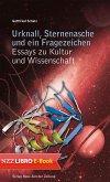 Urknall, Sternenasche und ein Fragezeichen (eBook, ePUB)