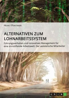 Alternativen zum Lohnarbeitssystem. Führungsverhalten und innovatives Management für eine sinnstiftende Arbeitswelt (eBook, ePUB)