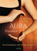 Aura Praxisbuch (eBook, ePUB)