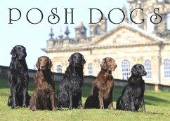 Posh Dogs - Pimpernel Press