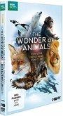 The Wonder of Animals - Tierische Überlebenskünstler - 2 Disc DVD