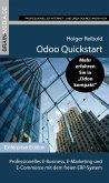 Odoo Quickstart (eBook, ePUB)