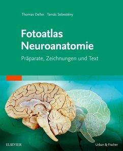Fotoatlas Neuroanatomie - Deller, Thomas;Sebesteny, Tamas