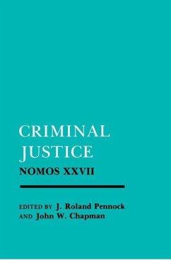 Criminal Justice (eBook, PDF)