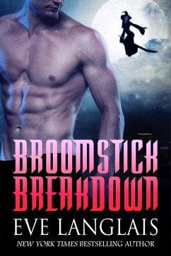 Broomstick Breakdown (eBook, ePUB)