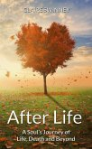 AFTER LIFE (eBook, ePUB)
