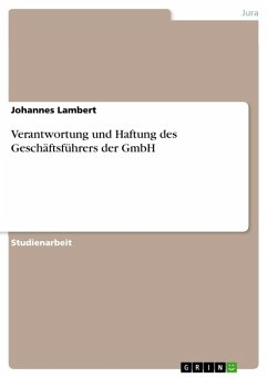 Verantwortung und Haftung des Geschäftsführers der GmbH (eBook, ePUB)
