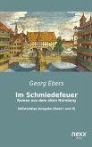 Im Schmiedefeuer: Roman aus dem alten Nürnberg (eBook, ePUB)
