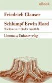 Schlumpf Erwin Mord - Wachtmeister Studer (eBook, ePUB)