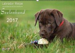 Labrador Welpe - Seelenhund (Wandkalender 2017 DIN A2 quer)