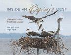 Inside an Osprey's Nest: A Photographic Journey Through Nesting Season