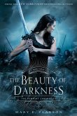 The Beauty of Darkness (eBook, ePUB)
