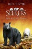 Brennender Himmel / Seekers Bd.11
