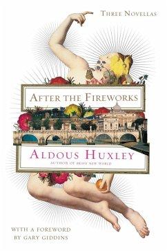 After the Fireworks (eBook, ePUB)