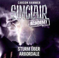 Sturm über Arbordale / Sinclair Academy Bd.4 (2 Audio-CDs) - Hammer, Carson