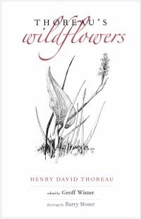 Thoreau's Wildflowers (eBook, ePUB) - Thoreau, Henry D.