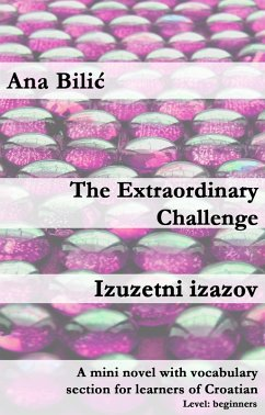 The extraordinary Challenge / Izuzetni izazov (eBook, ePUB) - Bilic, Ana