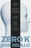 Zero K (eBook, ePUB)