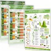 Essbare Wildkräuter für Grüne Smoothies, 2 Poster und Grüne Smoothies in 5 Minuten, 1 Poster