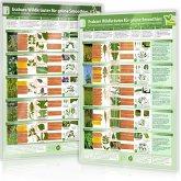 [2er Set] Essbare Wildkräuter für Grüne Smoothies (DINA4) Erkennungskarten Teil 1 und Teil 2 (2018)