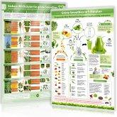 Essbare Wildkräuter für Grüne Smoothies, 1 Poster und Grüne Smoothies in 5 Minuten, 1 Poster