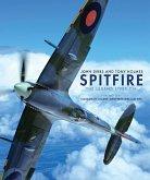 Spitfire (eBook, PDF)
