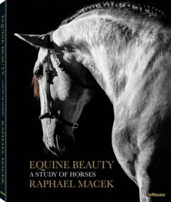 Equine Beauty, Small Format Edition