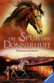 Flammenschlucht / Die Spur der Donnerhufe Bd.1 (eBook, ePUB)