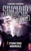 Sturm über Arbordale / Sinclair Academy Bd.4 (eBook, ePUB)