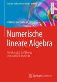 Numerische lineare Algebra (eBook, PDF)