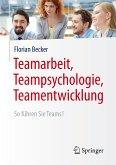 Teamarbeit, Teampsychologie, Teamentwicklung (eBook, PDF)