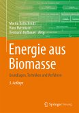 Energie aus Biomasse (eBook, PDF)