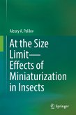 At the Size Limit - Effects of Miniaturization in Insects