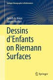 Dessins d'Enfants on Riemann Surfaces (eBook, PDF)
