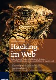 Hacking im Web (eBook, ePUB)