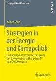 Strategien in der Energie- und Klimapolitik (eBook, PDF)