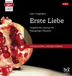 Erste Liebe, 1 MP3-CD - Turgenjew, Iwan S.