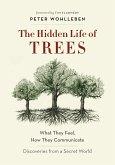 The Hidden Life of Trees (eBook, ePUB)