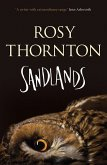 Sandlands (eBook, ePUB)