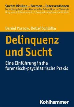 Delinquenz und Sucht - Passow, Daniel; Schläfke, Detlef