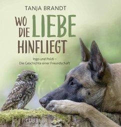 Wo die Liebe hinfliegt - Brandt, Tanja