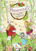 Die magische Wunschpost / Die Feenschule Bd.2