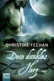 Dein dunkles Herz / Dark Carpathians Bd.28