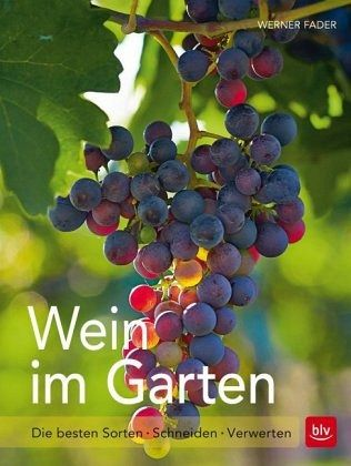 wein im garten von werner fader buch. Black Bedroom Furniture Sets. Home Design Ideas